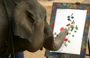 Olifanten zijn zeer intelligente dieren.