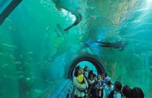 Chiang Mai Zoo aquarium is het grootst aquarium van Zuidoost-Azië.