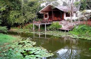 Overnachten in het Kaeng Krachan National Park kun je in een van de vele lodges.