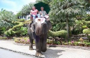 In Nong Nooch Garden kun je een ontspannen olifantentocht maken.