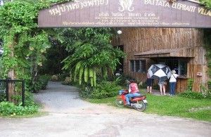 Pattaya Elephant Village ligt zo'n 20 km ten oosten van Pattaya.