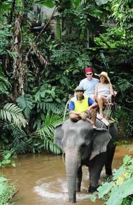 Het is leuk om een jeepsafari op Phuket te combineren met een olifantentrekking.