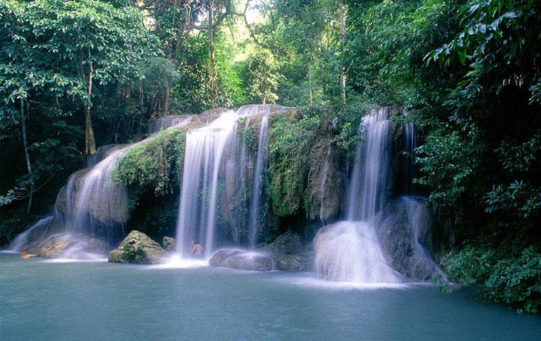 Thailand staat bekend om zijn uitbundige natuurlijke rijkdom. Hagelwitte stranden, groene jungles, indrukwekkende bergen en een grote verscheidenheid aan fauna en flora geven het land een grote verscheidenheid aan landschappen.
