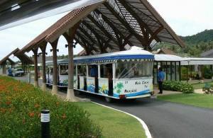 Het vervoer tussen de terminal en de vliegtuigen gaat op Samui Airport per treintje.