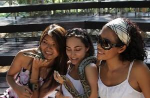In de Samui Snake farm kun je zelf ook een slang om je nek nemen.