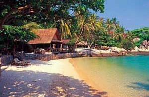 Sensi Paradise is een uitstekend middenklasse resort vlak bij het strand van Mae Haad Bay.