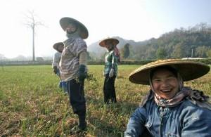 Ontmoet de bijzondere vriendelijke locale bevolking van Thailand.