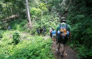 Thailand heeft een aantal prachtige trekking routes voor liefhebbers van het buitenleven.
